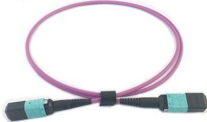 MPO patchcord (Senko MPO-12,Female,OM4 Multimode)